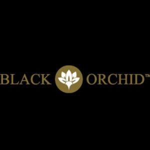 Black Orchid Tents